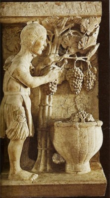 """""""Dixe Septembre: io coglio de li fighi/e l'uva vendemmo/ strengo le botte/e manzo li boni chaponi/ e bevo del mosto""""(Ballata dei Mesi, XIV secolo)"""