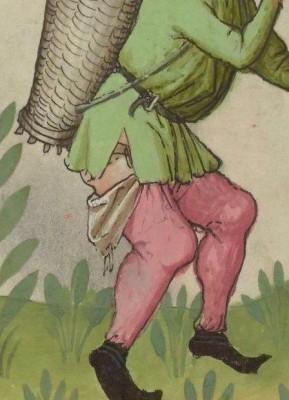 IBN BUTLÂN , Tacuinum sanitatis, BNF Latin 9333 fol 50r