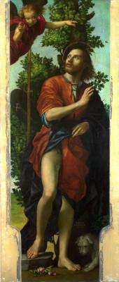 Paolo Morando (Il Cavazzola), Saint Roch, 16th century